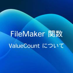 ValueCount について